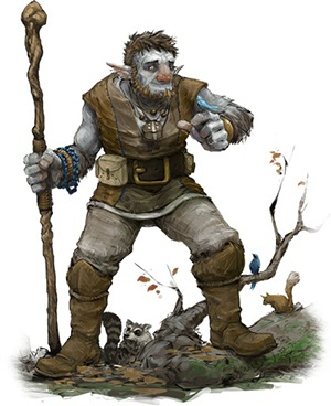 The Firbolg in Dungeons and Dragons 5e